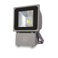 Προβολέας LED COB IP65 70W 3000K Spotlight 5231