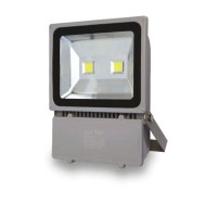Προβολέας LED COB IP65 100W 3000K Spotlight 5233